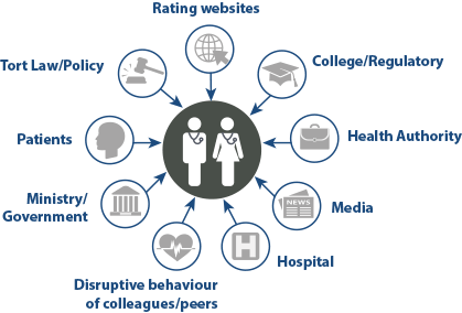 Diagram illustrating the nine issues most frequently cited by respondents including issues with rating websites, health authorities, colleges, media, hospitals, patients, governments, tort law/policy and colleagues/peers with respect to disruptive behaviour.